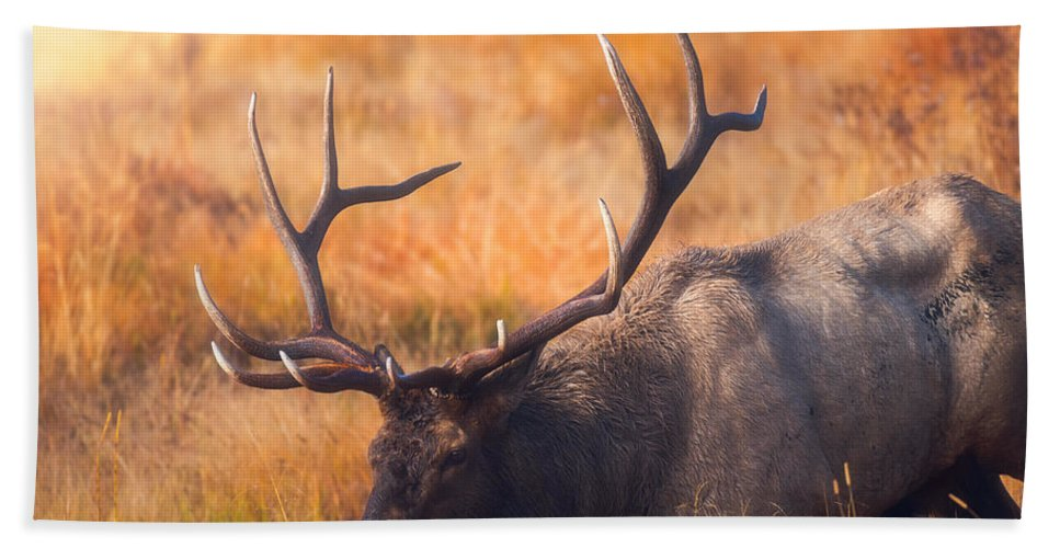Darren White Bath Towel featuring the photograph Shooting The Bull by Darren White