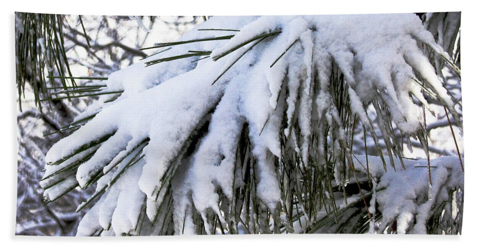 Seasons Hand Towel featuring the photograph Sierra Winter by John Carey