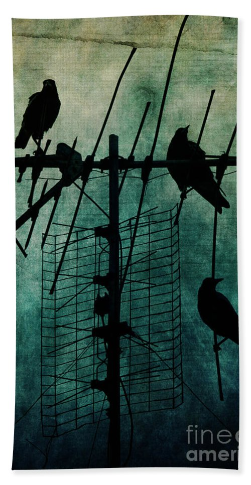 Crows Bath Sheet featuring the photograph Silent Threats by Andrew Paranavitana