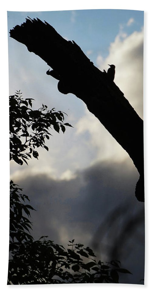 Silhouette Bath Sheet featuring the photograph Silhouette Against The Sky by Bill Lere