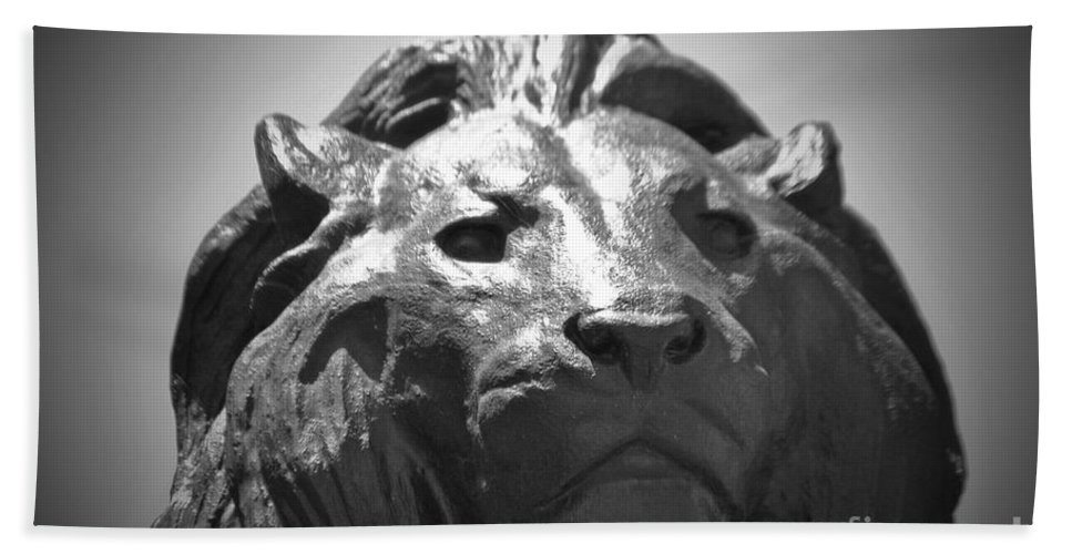 Baltimore Hand Towel featuring the photograph Silver Lion by Jost Houk