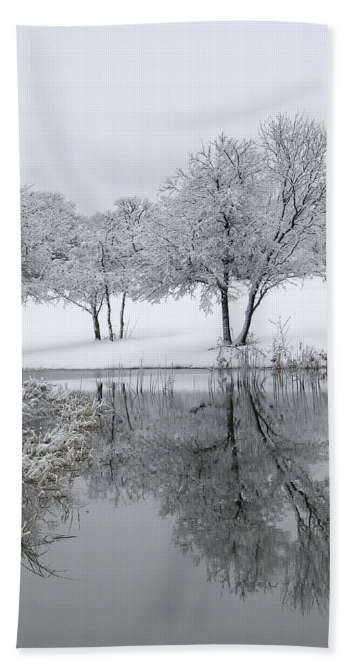 Pond Bath Sheet featuring the photograph Silver Morn by Gale Cochran-Smith