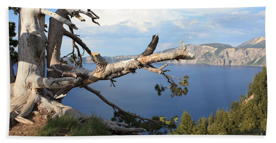 Crater Lake Bath Sheet featuring the photograph Silvery Tree Over Crater Lake by Carol Groenen