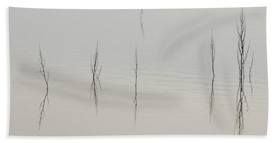 Lake Bath Sheet featuring the photograph Simplicity by Donna Blackhall