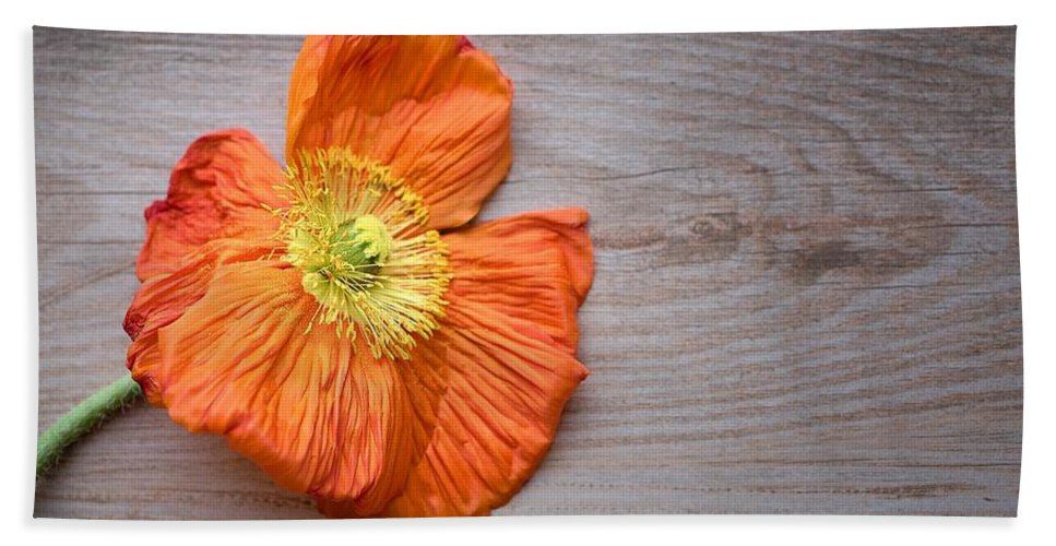 Poppy Poppies Orange Red Remembrance Wood Background Flowers Flower Flora Floral Nature Vintage Shabby Chic Style Botanical Art Hand Towel featuring the painting Single Poppy On Wood by Joy of Life Art Gallery