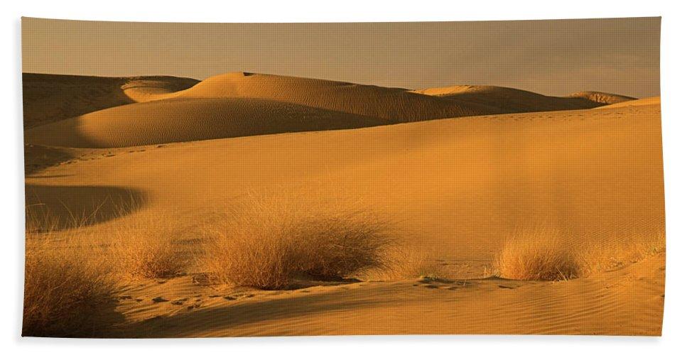 Desert Bath Sheet featuring the photograph Skn 1124 Desert Landscape by Sunil Kapadia