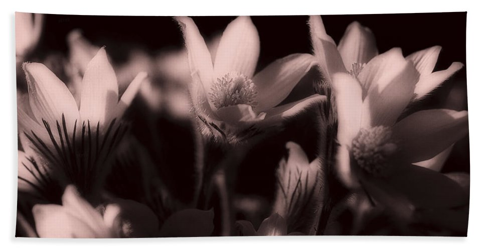 Flowers Hand Towel featuring the photograph Sleepy Flowers 2 by Marilyn Hunt