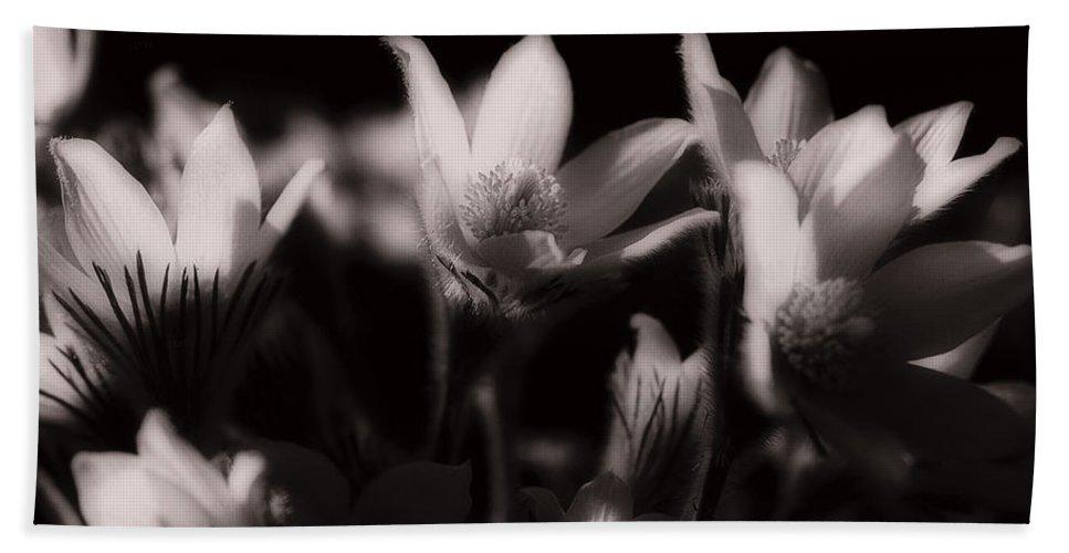 Flowers Bath Towel featuring the photograph Sleepy Flowers by Marilyn Hunt