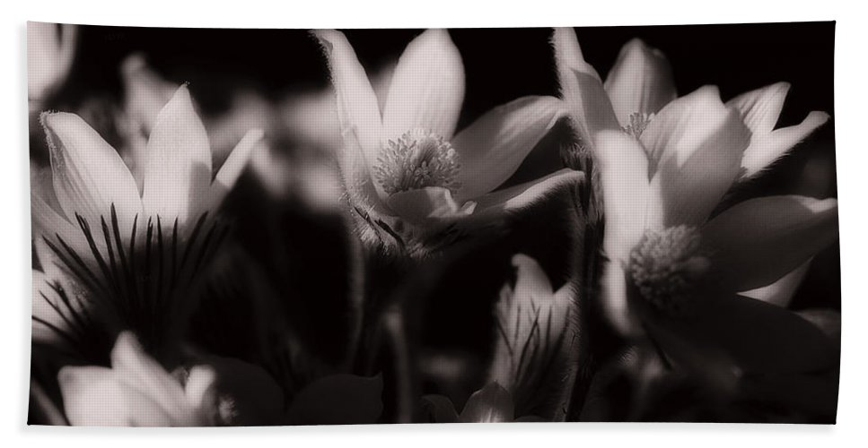 Flowers Bath Sheet featuring the photograph Sleepy Flowers by Marilyn Hunt