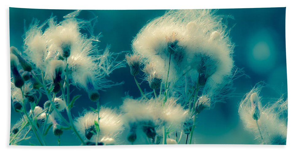 Wildflowers Hand Towel featuring the photograph Slip Away by Kristin Hunt
