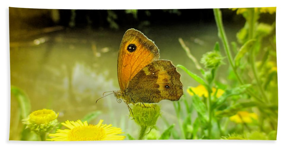 Small Heath Butterfly Hand Towel featuring the photograph Small Heath Butterfly by Valerie Anne Kelly