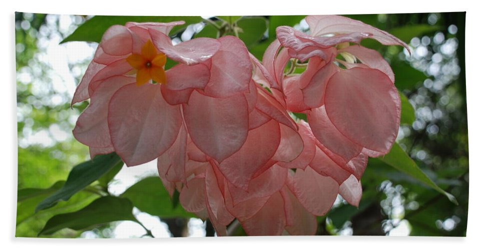 Orange Bath Towel featuring the photograph Small Orange Flower Pink Heart Leaves by Rob Hans