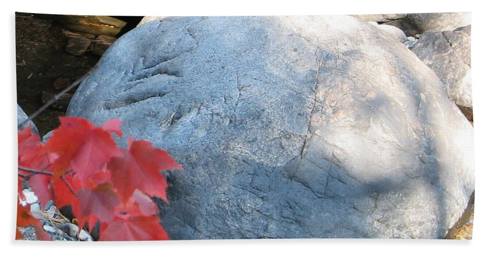 Stone Hand Towel featuring the photograph Small Wonder by Kelly Mezzapelle