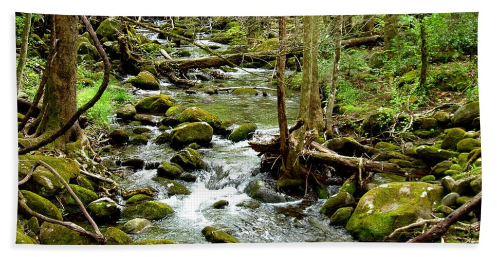 Smoky Mountains Hand Towel featuring the photograph Smoky Mountain Stream 1 by Nancy Mueller