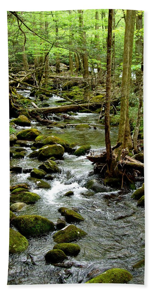 River Hand Towel featuring the photograph Smoky Mountain Stream 2 by Nancy Mueller