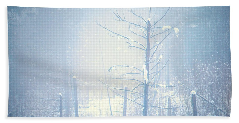 Snow Hand Towel featuring the photograph Snow And Remnants Of The Fire 2 by Tara Turner