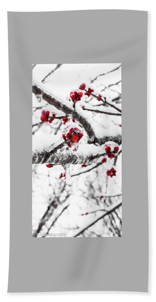 Winter Hand Towel featuring the photograph Snow Berry by DA Photography