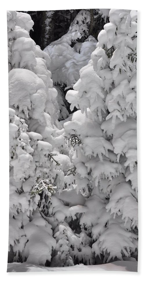 Snow Hand Towel featuring the photograph Snow Coat by Alex Grichenko