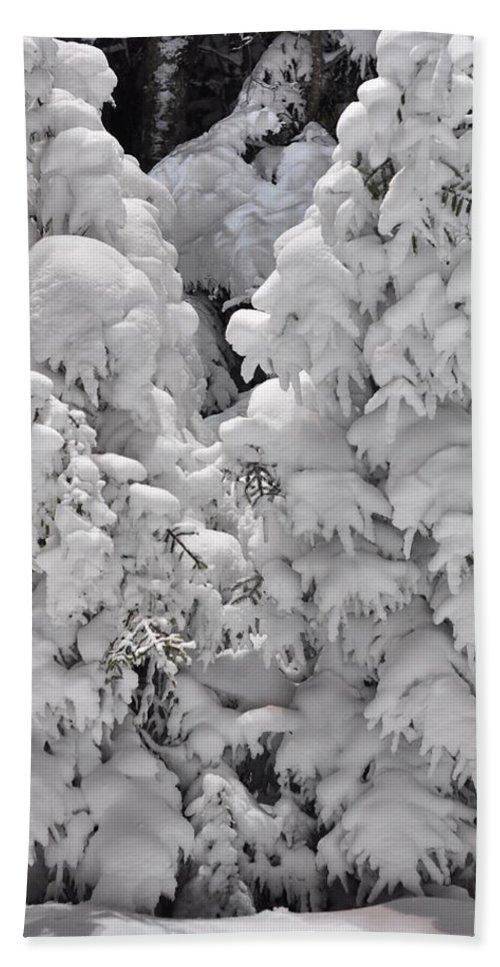 Snow Bath Towel featuring the photograph Snow Coat by Alex Grichenko