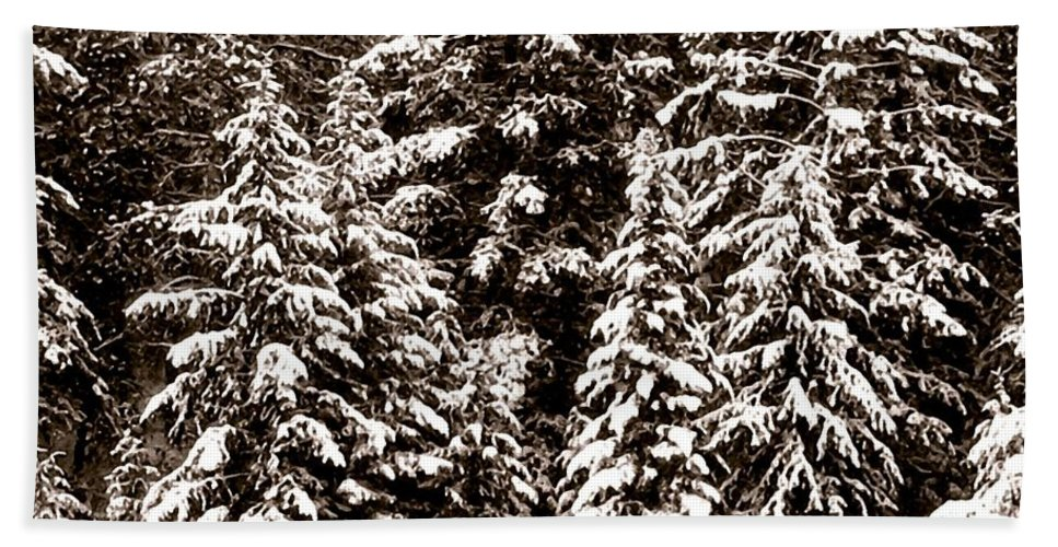Snow-laden Forest Hand Towel featuring the photograph Snow-laden Forest by Will Borden