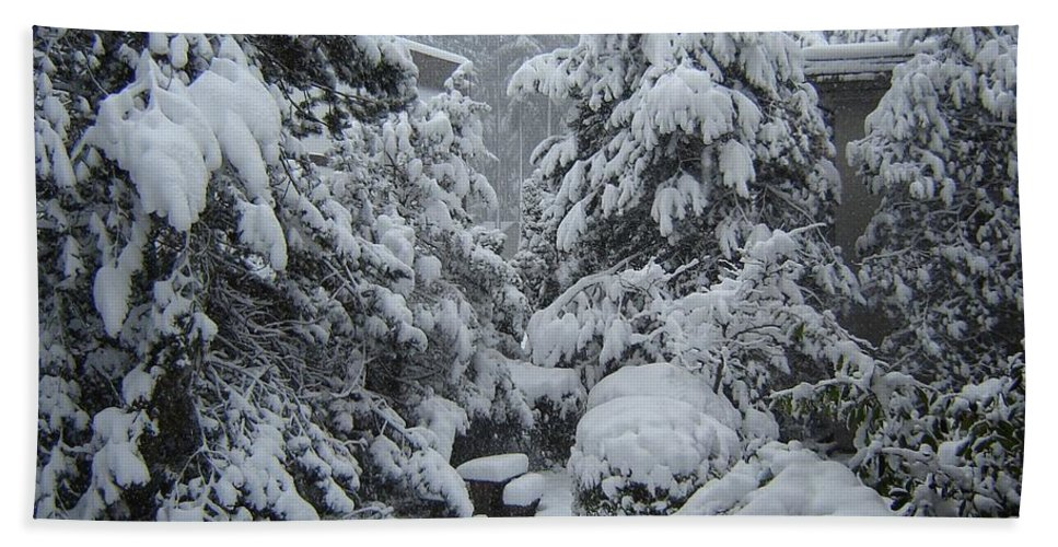 Snow Winter White Trees Heavy Snowy Snowfall Deep Gray Peaceful Quiet Landscape Bath Sheet featuring the photograph Snow, Snow, Snow, White Rock, B.c. by Catherine Robertson