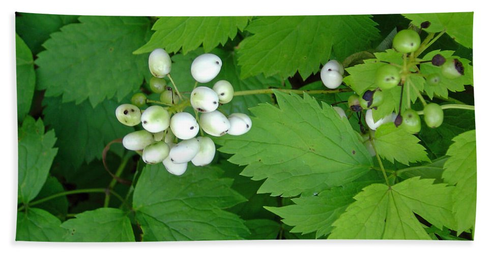 Snow White Bush Of Berries Bath Towel featuring the photograph Snow White Berries by Joanne Smoley