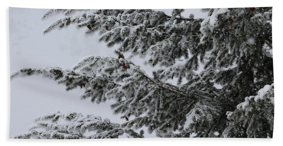 Tree Hand Towel featuring the photograph Snowfall by LKB Art and Photography
