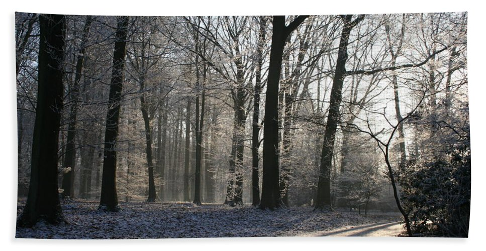 Light Hand Towel featuring the photograph Mystical Winter Landscape by Christiane Schulze Art And Photography