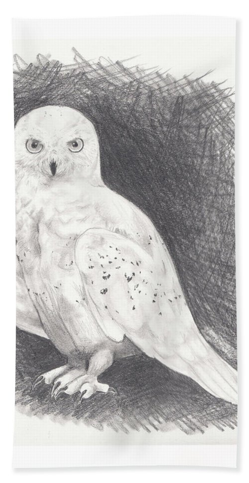 Owl Hand Towel featuring the drawing Snowy Owl by Emma Olsen
