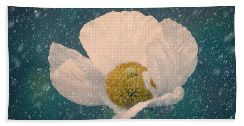 Poppy Hand Towel featuring the photograph Snowy Poppy by Jim And Emily Bush