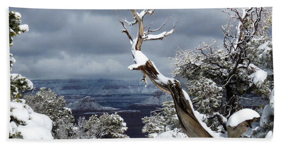 Grand Canyon Hand Towel featuring the photograph Snowy View by Laurel Powell