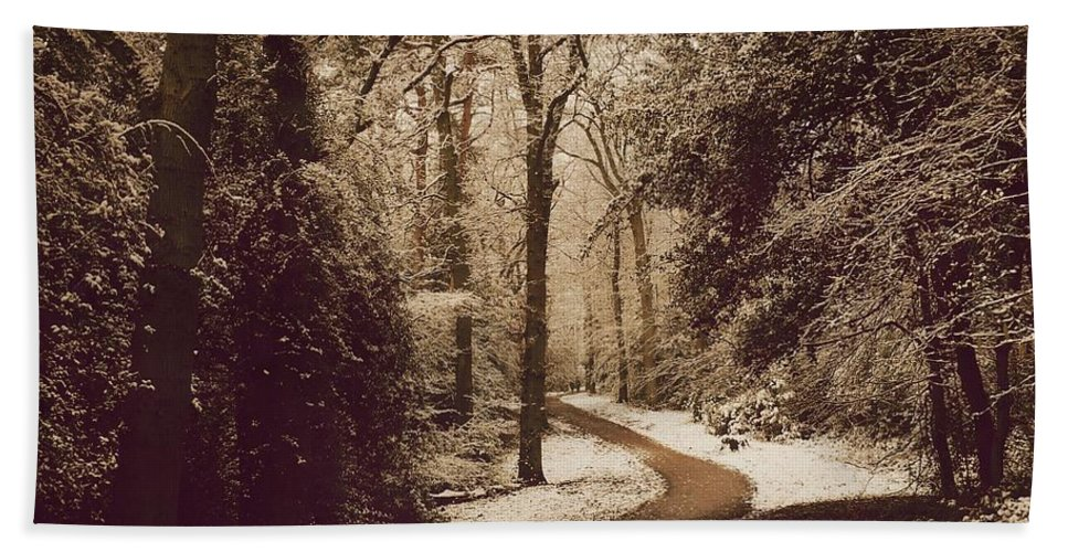 Winter Hand Towel featuring the photograph Snowy Woodland Walk One by Mo Barton