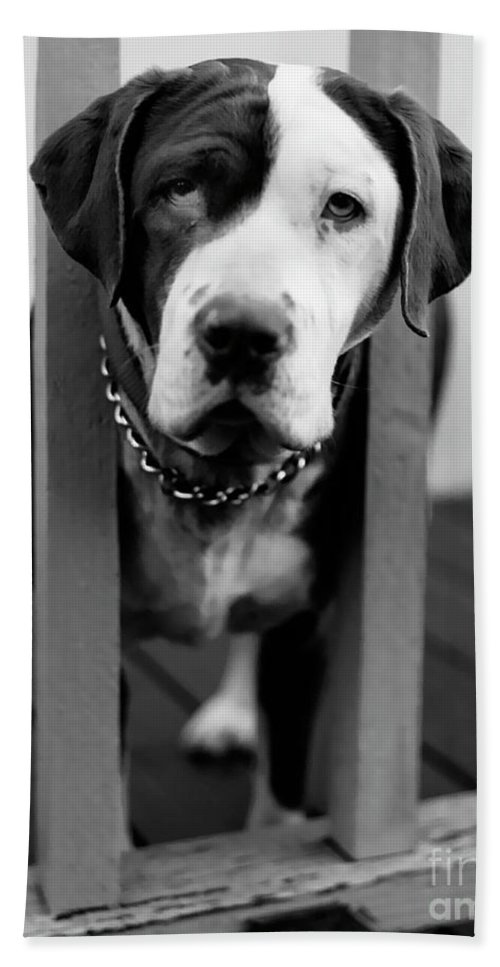 Black And White Hand Towel featuring the photograph So Sad by Peter Piatt