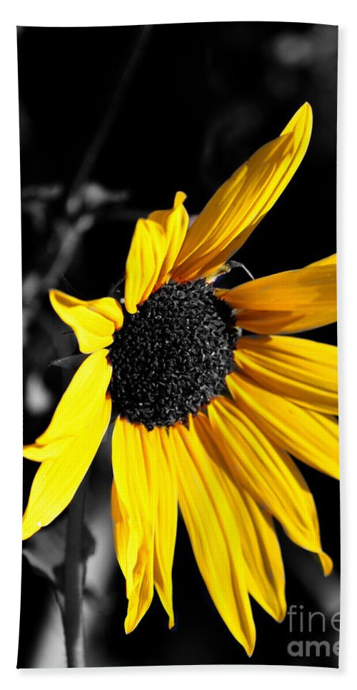 Clay Bath Towel featuring the photograph Soaking Up The Yellow Sunshine by Clayton Bruster