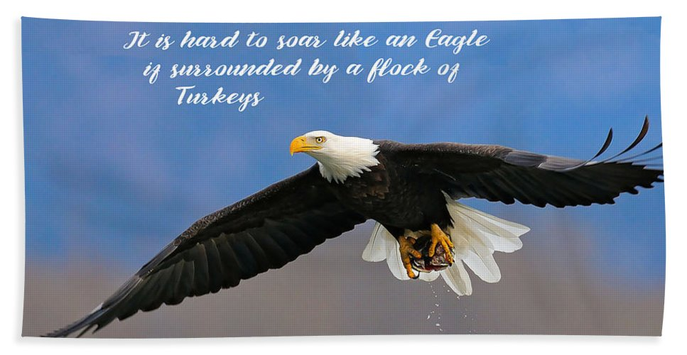 Inspirational Hand Towel featuring the photograph Soar Like An Eagle If You Can by Elaine Plesser