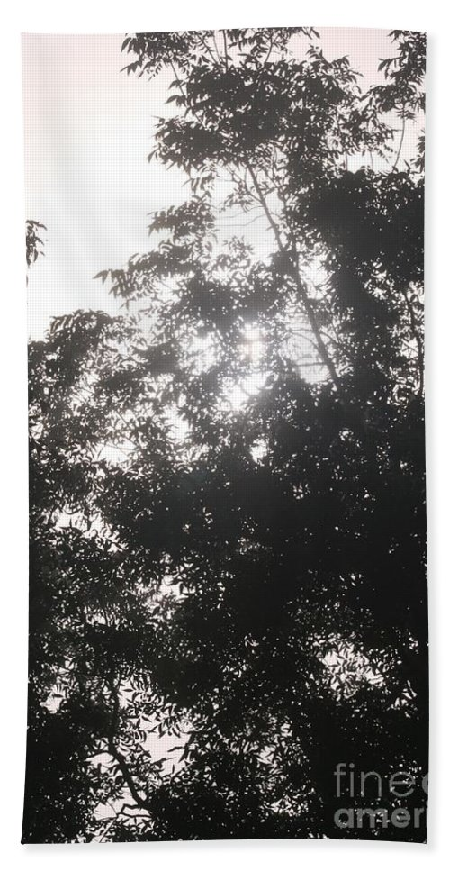 Light Hand Towel featuring the photograph Soft Light by Nadine Rippelmeyer