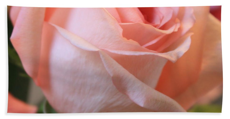 Pink Rose Bath Towel featuring the photograph Soft Pink Rose by Carol Groenen