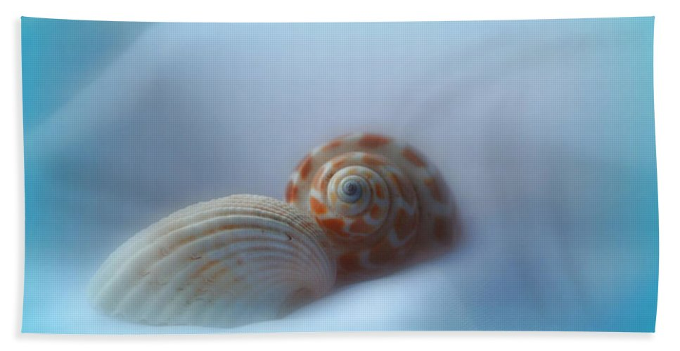 Nature Hand Towel featuring the photograph Soft Shells by Linda Sannuti