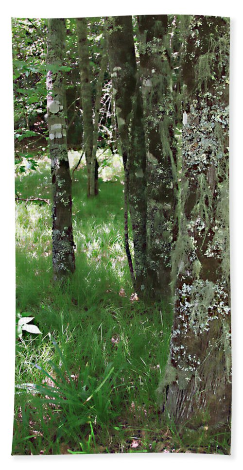 Trees Forrest Green Photograph Photography Digital Summer Hand Towel featuring the photograph Soft Trees by Shari Jardina