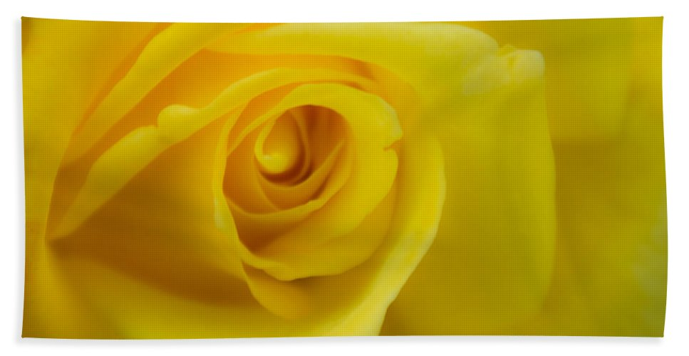 Yellow Rose Hand Towel featuring the photograph Soft Yellow Rose by Brent Martin - My Photography Adventure