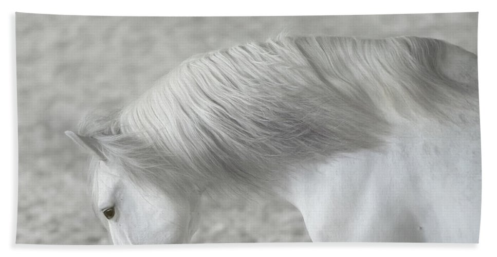 Horse Bath Sheet featuring the photograph Softly Swept by Pamela Steege