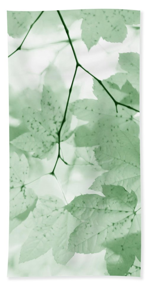 Leaf Hand Towel featuring the photograph Softness Of Green Leaves by Jennie Marie Schell