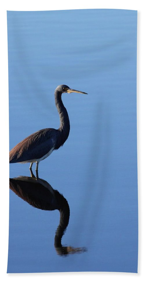 Heron Bath Sheet featuring the photograph Solitude by Bruce J Robinson