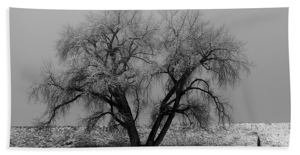 Winter Bath Sheet featuring the photograph Solitude by Marilyn Hunt
