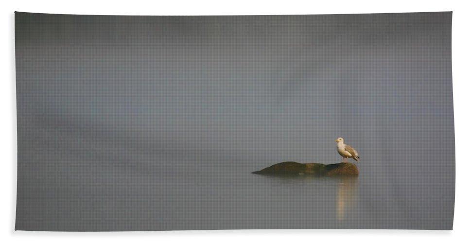 Water Pond Seagull Bird Feathers Tern Photograph Photography Digital Art Fine Art Bath Sheet featuring the photograph Solitude by Shari Jardina