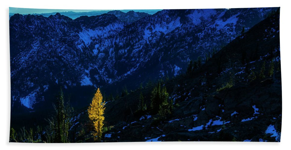 Cold Bath Sheet featuring the photograph Solo Larch 2 by Pelo Blanco Photo