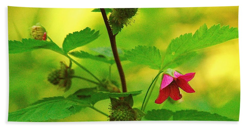 Flower Bath Sheet featuring the photograph Something Red by Mark Lemon