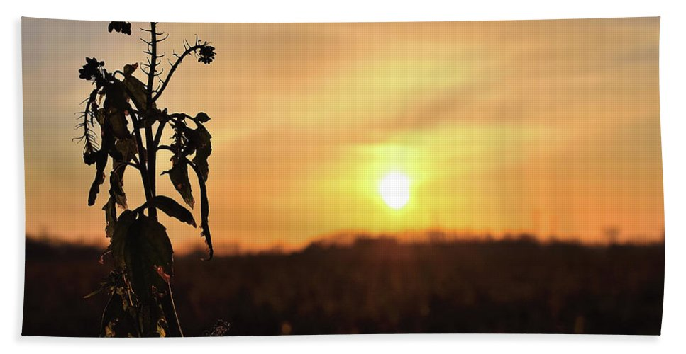 Sonnenuntergang Blume Flowwer Sky Himmel Bath Towel featuring the photograph Sonnenuntergang by Scimitarable