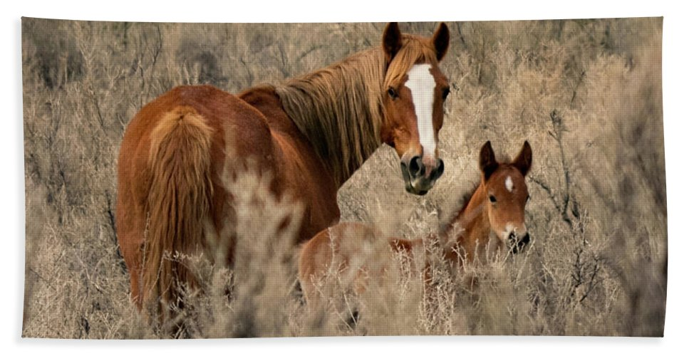 April Hand Towel featuring the photograph Sorrel Mare And Foal by Debbie Rudd
