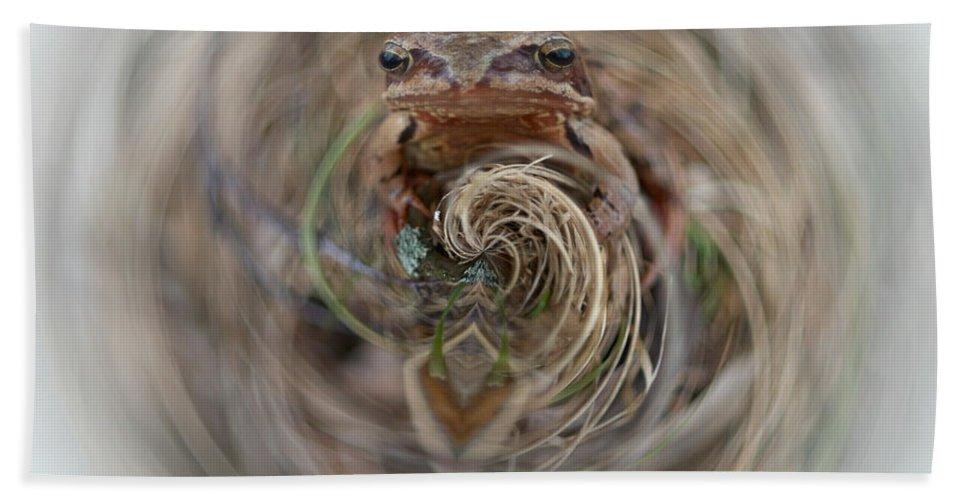 Lehtokukka Hand Towel featuring the photograph Sorry Said The Frog 2 by Jouko Lehto